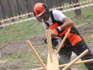 Фото: Фото. На Полтавщині відбулися змагання вальників лісу