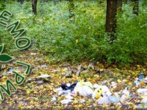 У Полтаві вивезуть сміття з Гришкового та Пушкарівського лісів