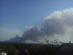 Фото: 173 пожежники та 28 авто гасили лісову пожежу на Полтавщині