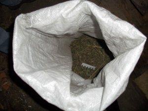 Фото: Житель Полтавщини ховав мішок конопель