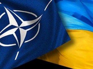 Фото: Україні нададуть зброю  5 країн НАТО