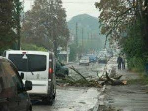 Фото: У Полтаві через негоду сталась ДТП: є травмований