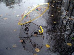 Фото: Чим зайняти дитину в дощову погоду