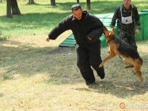 Фото: У Полтаві злодії, тікаючи, випадково натрапили на кінологів