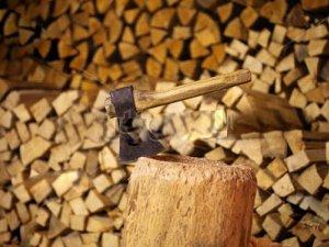Фото: На Полтавщині зріс попит на дрова серед населення