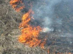 Фото: Полтавські рятувальники розповіли про небезпеку при спалюванні сухої трави