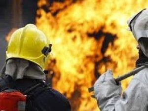 Фото: На Полтавщині під час пожежі згоріли кури і качки