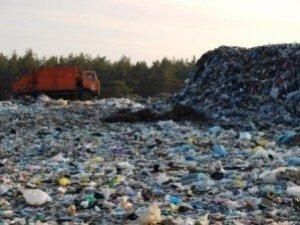 Фото: На сміттєзвалище під Полтавою виділять 18 гектарів лісу