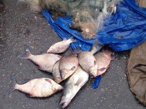 Фото: У Кобеляцькому районі затримали чоловіка, який незаконно перевозив 70 кілограмів риби
