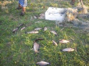 Фото: На Полтавщині правоохоронці вилучили в браконьєра 120 метрів рибальських сіток