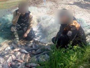 Фото: У районі національного парку «Нижньосульський» браконьєри виловили 40 кг риби