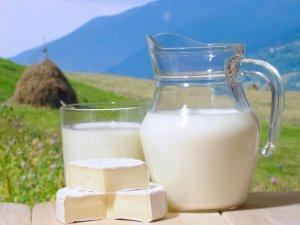 Фото: Пити чи не пити молоко – думки фахівців про шкідливість цього продукту