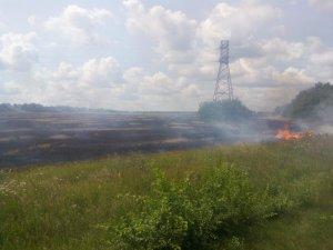 Фото: Під Полтавою згоріло поле