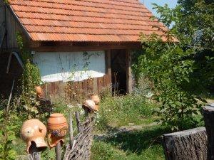 Фото: На Сорочинському ярмарку говоритимуть про сільський зелений туризм