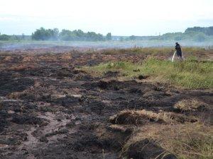 Фото: У двох районах Полтавської області горять торфовища