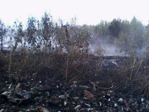 Фото: У Лохвиці горіло сміттєзвалище