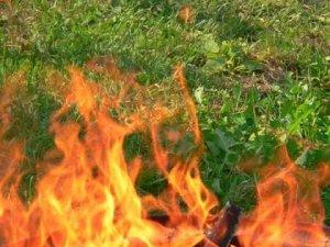 Фото: На Полтавщині 90-річна жінка впала у вогнище
