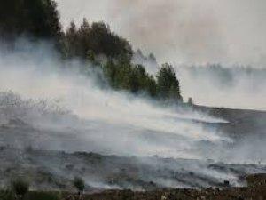 Фото: На Полтавщині палає торф на 15 гектарах