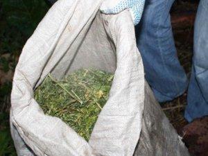 Фото: Житель Донеччини перевозив через Полтавщину мішок коноплі