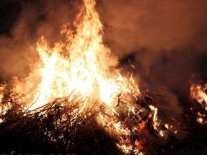 Фото: У Кременчуцькому районі згоріло 20 тонн сіна
