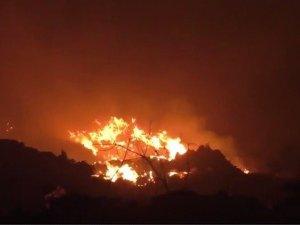 Фото: Пожежу на сміттєзвалищі загасили, але рятувальники ще там