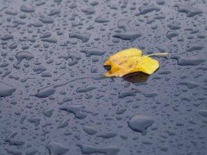 Фото: «Бабине літо» закінчилось і варто чекати похолодання зі зливами