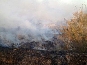 Фото: Сезон пожеж: на Полтавщині горіло уже четверте сміттєзвалище