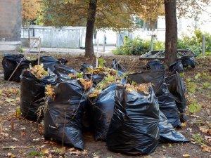 Фото: Полтавці прибирали кадетський корпус (фоторепортаж)
