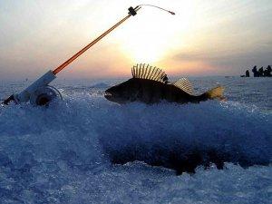 Фото: Для рибалок ввели обмеження на ловлю взимку: заборонені зони