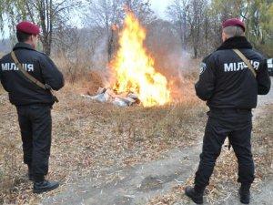 Фото: Полтавські міліціонери спалили наркотиків на 1,2 мільйона гривень