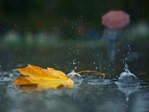 Фото: В Україні дощитиме до кінця тижня