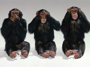 Фото: Суб'єктивно про прес-конференцію з приводу порушень на виборах