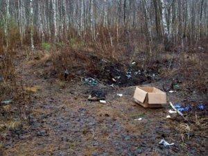 Фото: У лісі під Полтавою знайшли тіло дівчини