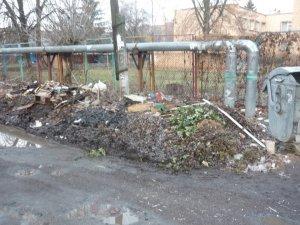 Фото: З провулку Інтернаціональний у Полтаві комунальники не вивозять сміття (фотофакт)