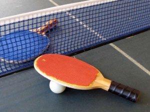 Фото: У Комсомольську проходили змагання з настільного тенісу