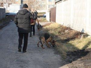 Фото: На Полтавщині чоловік гумовою палицею побив до смерті знайому
