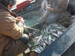 Фото: На Полтавщині рибалки незаконно наловили риби на 90 тисяч гривень (ФОТО)