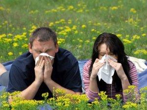 Фото: Полтавці мало знають про алергію: опитування