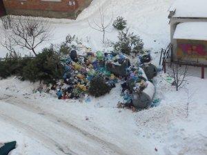 Фото: Двір розчищений, а сміття не вивозять: полтавці скаржаться на владу (фотофакт)