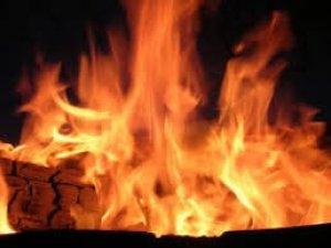 Фото: На Полтавщині неподалік залізничного моста сталася пожежа