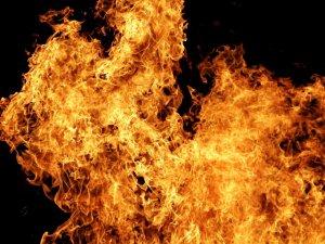 Фото: Відомі нові подробиці пожежі неподалік залізничного моста в Машівському районі