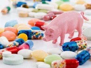 Фото: Полтавців закликають «Виключити антибіотики з меню»