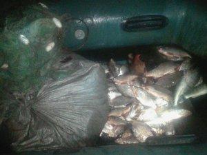 Фото: На Полтавщині чоловік незаконно наловив риби майже на 30 тисяч