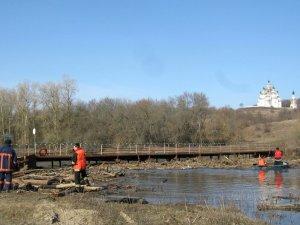 Фото: У Гадяцькому районі дерева в річці ледь не зруйнували міст