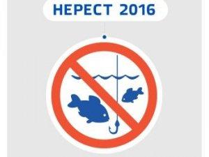 Фото: На Полтавщині заборонили ловити рибу з 1 квітня