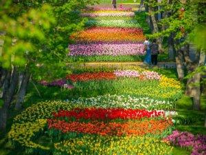 Подорожуємо Україною: куди поїхати весною