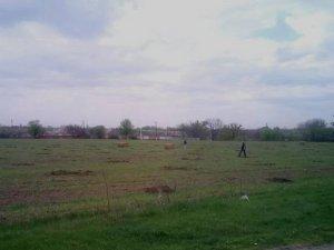 Фото: На околиці Полтави з'явився молодий садок