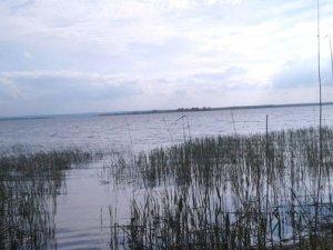 Фото: За браконьєрство на Дніпродзержинському водосховищі чоловік може отримати до трьох років
