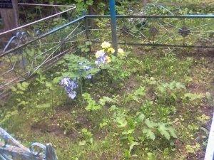 Фото: У Лубнах 53-річний чоловік розграбовував могили