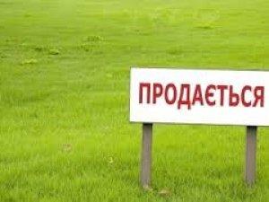 Фото: На Полтавщині для інвестицій запропонують 19 земельних ділянок
